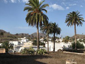 Haria- Tal der tausend Palmen