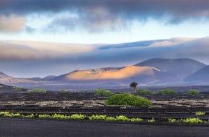 Timanfaya National Park. Lanzarote