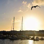 Im Hafen von la Graciosa
