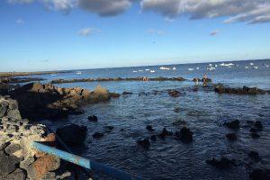 Naturschwimmbecken in Punta Mujeres in der Nähe unserer Ferienwohnung
