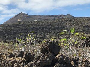 Ye im Norden der Insel Lanzarote