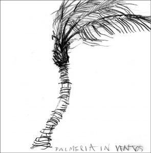 Palme im Wind- Zeichnung