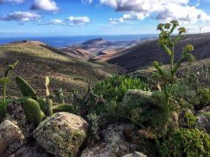 Ausblick über das Meer Lanzarote