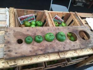 Tomaten der Güteklasse A