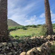 Ausflug mit Wanderung rund um Haria