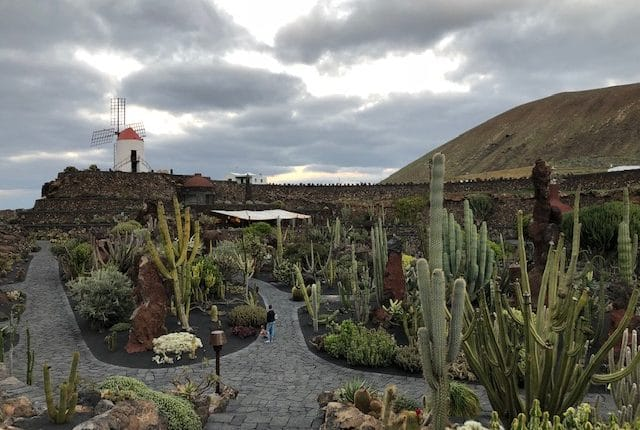 Kaktusgarten Lanzarote Ferienhaus am Meer