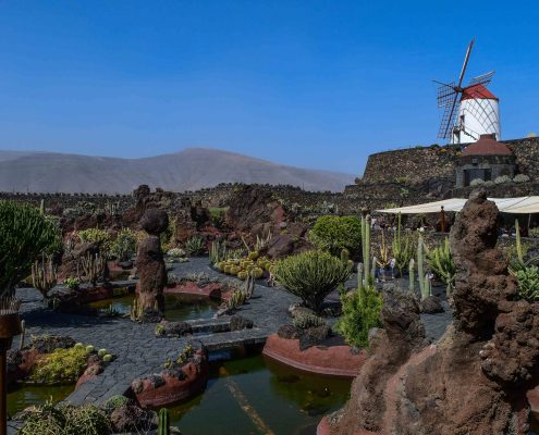 Kaktusgarten- Ausflug Lanzarote
